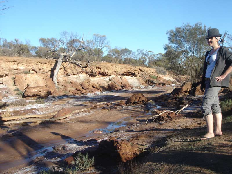 coalseam-conservation-park